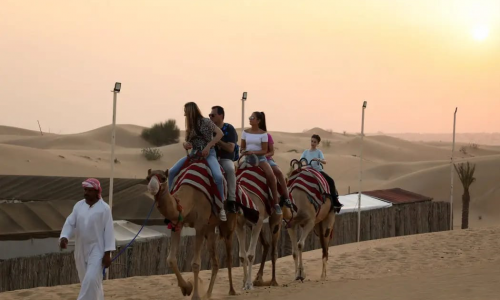 vip desert safari